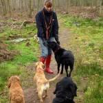 Joanna, Milou, Bali, Olive & Stella out walking