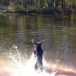 jet splashing in the water